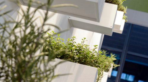 Terrazzi e giardini: cosa prevede il bonus verde